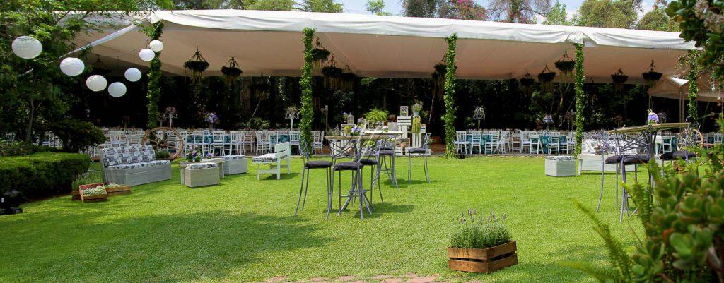 Jardines df banquetes hada martens for Arbol de fuego jardin